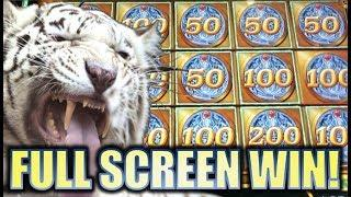 •TIGER POWER! MIGHTY CASH!• LONG TENG HU XIAO (Aristocrat) FULL SCREEN! Slot Machine Bonus Win