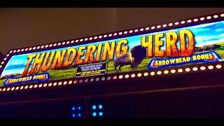Thundering Herd slot- Bonus!