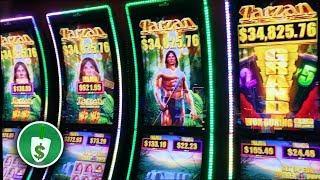 Tarzan Grand slot machine, 2 sessions, bonus