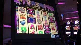 Miss Kitty lowrolling slot machine game BONUS free games