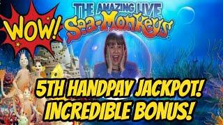 OMG! 65 Spins! 5th Jackpot & the largest one! Amazing Live Sea Monkeys!