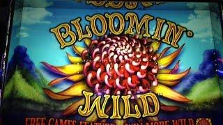 Bloomin' Wild Slot Bonus w/ Many Retriggers - Aristocrat