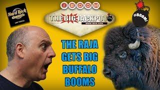 • BIG Buffalo Booms at the Hard Rock Casino in Las Vegas •