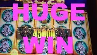 HUGE WIN!!! LIVE PLAY and Bonuses on Rhino Charge Slot Machine