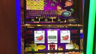 VGT Mr Money Bags Triple The Money Red Screen - Red Spin $12.50 Max Bet