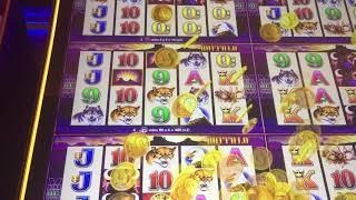Buffalo Super Free Games Wonder 4 Boost