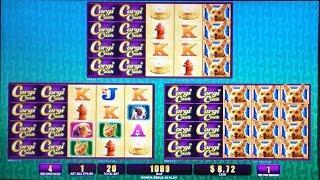 Corgi Cash Slot Machine, Wife's Free Play Bonus