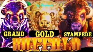 • YOUR FAVORITE BUFFALO SLOTS • Buffalo Gold/Grand/Stampede slot machine Bonus wins JACKPOT!