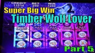 •SUPER BIG WIN•Timber Wolf Lover Part 5•Timber Wolf & Timber Wolf Deluxe Slot machine /$2~$2.50 Bet