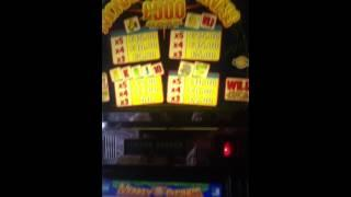 Gamesoft - Monkey business full screen of lions £500 jackpot!