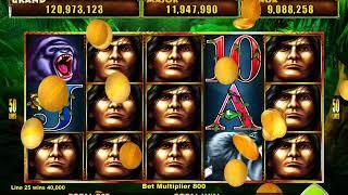 TARZAN LORD OF THE JUNGLE Video Slot Casino Game with a BIG WIN