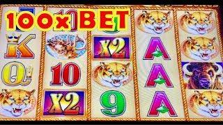 • WILL WE EVER GET 15 BUFFALO HEADS ? • ? • 100x BIG WIN BUFFALO GOLD • SLOT MACHINE