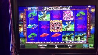 Sakura Tree worst Slot Bonus Round in History