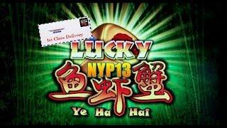 *NEW DELIVERY* Ainsworth - Lucky Ye Ha Hai Slot Bonus