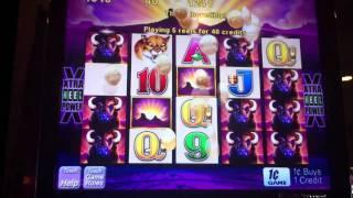 Aristocrat Buffalo Slot Win - Parx Casino - Bensalem, PA