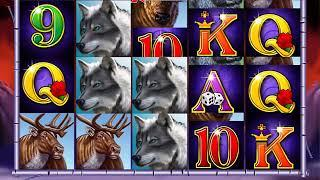 WINNING WOLF Video Slot Casino Game with a WINNING WOLD FREE SPIN BONUS