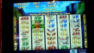 Bloomin Wild Slot Machine Bonus Win queenslots