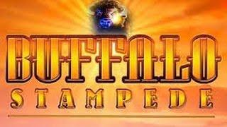 Aristocrat NEW Buffalo Stampede Bonus with Retriggers BIG WIN!