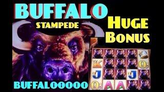 BUFFALO STAMPEDE slot machine  HUGE BONUS WIN!