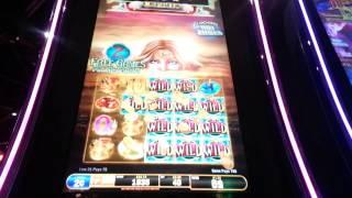 Hawaiian goddess slot machine why is online gambling illegal in south africa