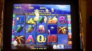 Dolphin's Pearl Slot Machine
