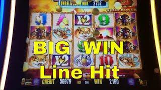 Buffalo Gold Slot Machine Bonus and Big Win Buffalo Line Hit
