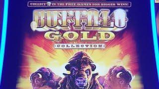 Live stream Slot Play   Buffalo Gold, 5 Dragons Gold,Gold Bonanza,Konami Machine