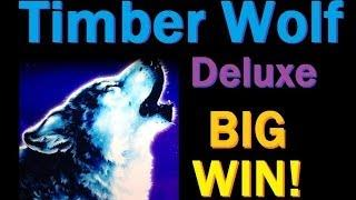 BIG BIG WIN!! Timber Wolf Deluxe Slot Machine Bonus! ~Aristocrat (TimberWolf Legends Slot Big Win)