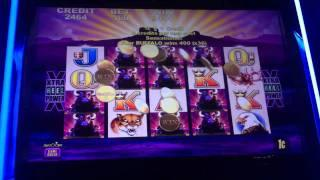 Aristocrat Buffalo Win - Borgata Hotel and Casino - Atlantic City, NJ