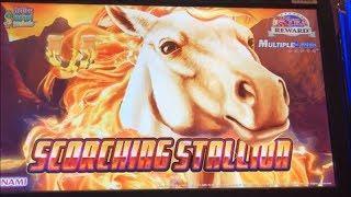 •Horse roaring•SCORCHING STALLION Slot (KONAMI) $3.20 MAX Bet•$125 Free Play Live @San Manuel