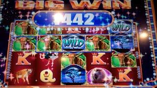 Wild Zebra Slot Machine Bonus - 7 Free Games with Locked Wilds + Stacked Zebra Wilds - Nice Win