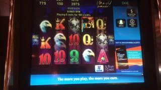 Wild Stallion - Bonus - Nice Win! - $1.50 Bet. I stuck $20 into this machine