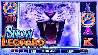 WMS ~ SNOW LEOPARD SLOT MACHINE BONUS WIN FREE SPINS