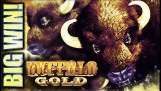 •GOING FOR GOLD!• BUFFALO GOLD & THE WALKING DEAD BIG WIN! Slot Machine Bonus (Aristocrat)
