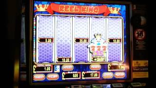 reel king slot 5 scroll feature