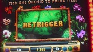 Jungle Riches NEW SLOT MACHINE WIN + Retrigger Free Spins