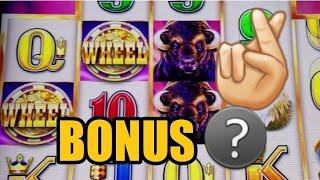 Buffalo Grand Slot and Wild Americoins | Ryan Plays Slots