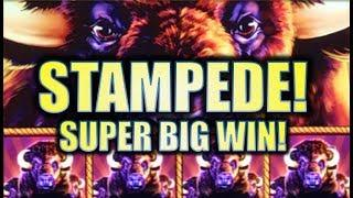•STAMPEDE SUPER BIG WIN!• MY BIGGEST BUFFALO GOLD & A BUFFALO STAMPEDE! Slot Machine Bonus