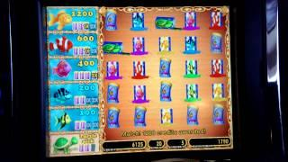 Goldfish, Slot Machine, Fish Food Bonus BIG WIN