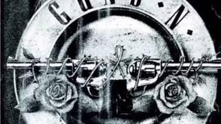 Guns 'N Roses - A Compilation of Videos from the June 23rd Detroit Show! Ford Field • DJ BIZICK'S SL