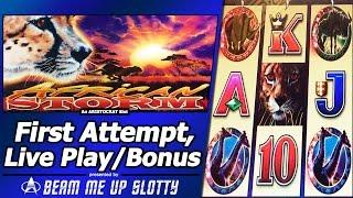 African Storm Slot - Live Play and Free Spins Bonuses in my First Attempt