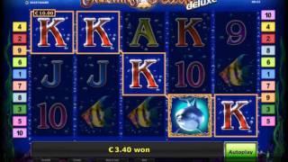 Money storm casino login gmail
